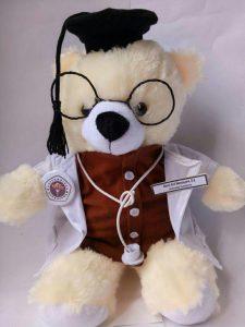 Boneka wisuda profesi, boneka dokter, jual hadiah wisuda profesi suster, perawat,