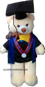 souvenir boneka wisuda, boneka teddy bear wisuda, boneka toga, hadiah buat wisuda, jual boneka teddy bear besar, jual boneka wisuda murah,