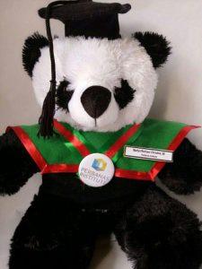 Boneka wisuda panda lucu, jual boneka wisuda panda unik, jual boneka wisuda cowo,