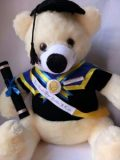 Boneka Wisuda Teddy Bear Besar Ijazah | Kado Wisuda Teddy Bear Besar Ijazah