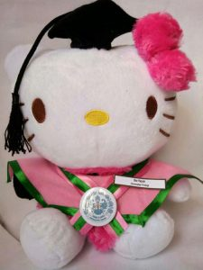 boneka hello kitty, boneka wisuda hello kity, Hello kitty Wisuda