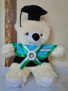 Jual Boneka Teddy Bear Wisuda Di Surabaya, Boneka Wisuda Teddy Bear, souvenir boneka wisuda, hadiah wisuda untuk pacar, kado wisuda di surabaya murah,