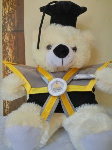 Grosir Boneka Teddy Bear, kado wisuda buat pacar, kado wisuda untuk pacar, boneka wisuda hello kitty, Teddy Bear