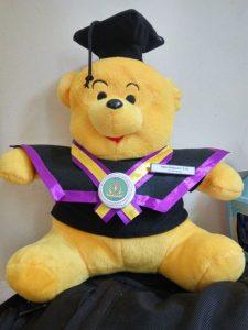 Grosir Boneka Teddy Bear, Jual Boneka Wisuda Jakarta, Boneka Jakarta