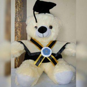 boneka sarjana, hadiah wisuda buat pacar, jual boneka wisuda online, boneka graduation,