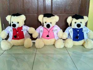 Boneka Dokter, Boneka wisuda dokter, boneka teddy bear dokter, boneka teddy bear besar,
