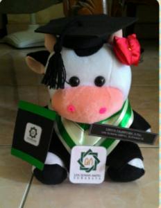 Jual Boneka Wisuda Sapi Murah sebagai Kado Untuk Wisuda, Boneka wisuda Sapi, souvenir boneka wisuda sapi, kado untuk wisuda boneka sapi murah,